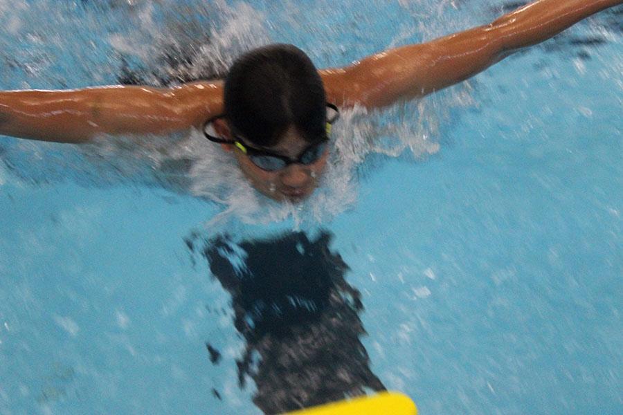 sophomore brinden diez-estrada swimming butterfly stroke