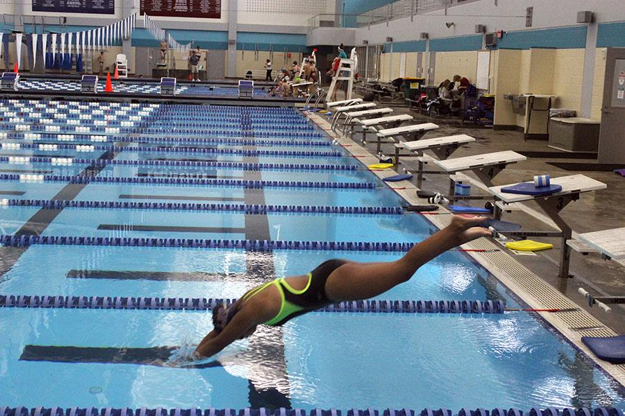 freshman ashley Irin entering the water from a dive