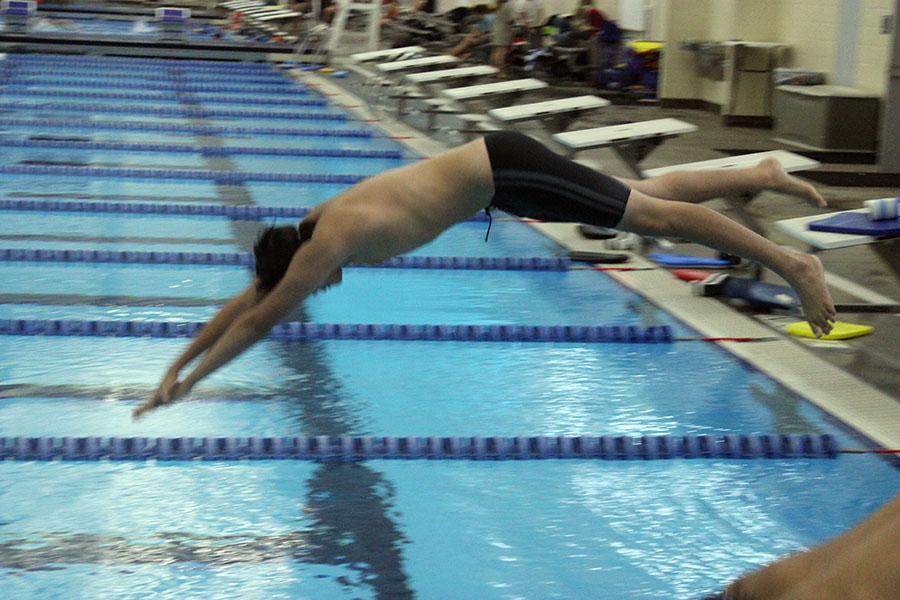 Sophomore Brandon Diaz-Estrada diving from the diving block