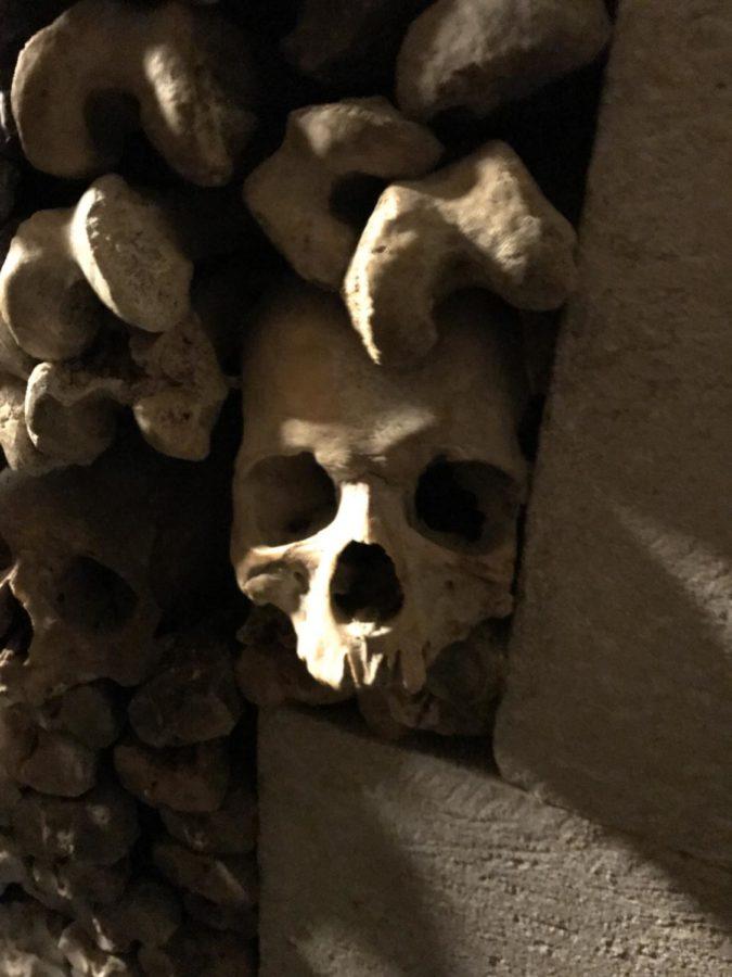 skull close up at the catacombs