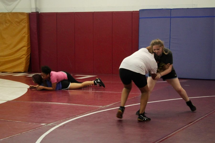 Girls pair up and begin practicing simple techniques during Thursday morning practice on Nov. 29.