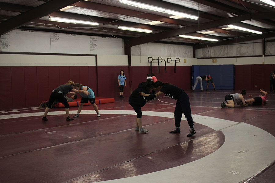 The girls varsity wrestling team practices technique during practice on Tuesday, Feb. 13.