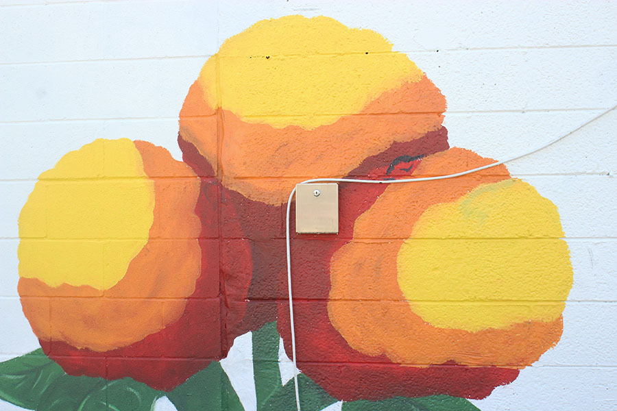 A close up view of the yellow flower mural painted by Montellano.
